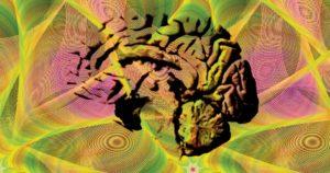 Figura Cérebro