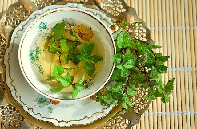 6 Benefícios do Chá de Hortelã para Idosos